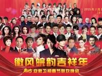 安徽卫视2015春晚