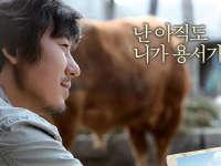 与牛一起旅游的方法