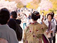 日语极速入门