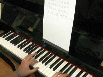 小鸡小鸡 美女钢琴独奏神曲
