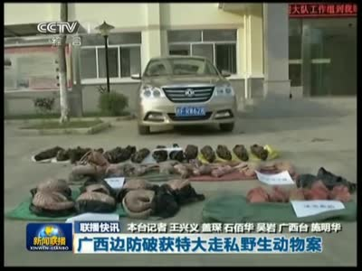 广西边防破获特大走私野生动物案