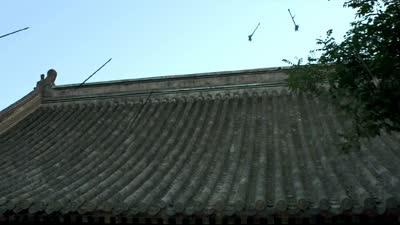 《绣春刀》首支预告片 影片提档至8月7日上映