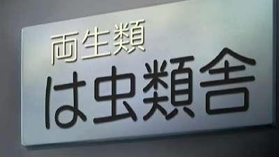 向北(北国恋曲)07