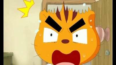吉祥猫可可14