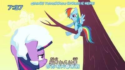 彩虹小马:友情就是魔法11