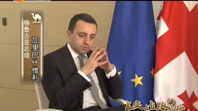 连接欧亚 对话格鲁吉亚总理
