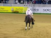国际马联马术欧洲锦标赛 西部马术决赛I