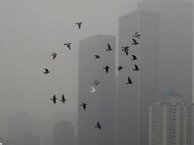 镜头延时摄影记录北京街头雾霾