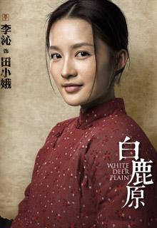 田小娥-李沁