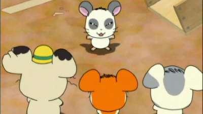 哈姆太郎第三季09 国语版