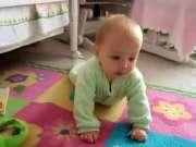 汪星人教宝宝爬行