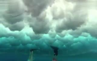 自由潜水 三比基尼美女海底与鲸共舞