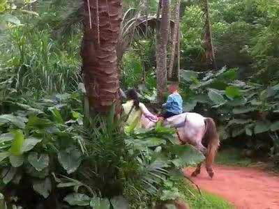 林响在海南野生动物园骑白马