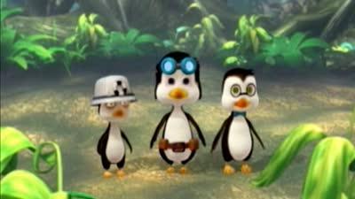 企鹅部落24