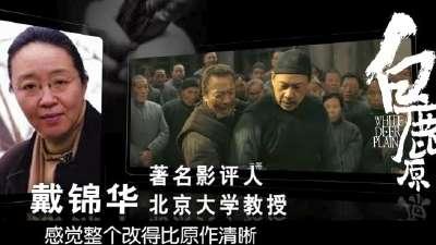 《白鹿原》 名人推荐视频 崔永元姚晨热评