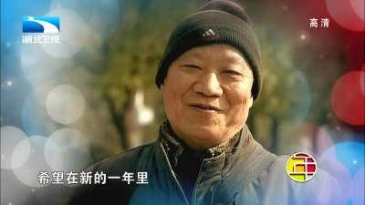 陶红演唱《点亮幸福》-湖北卫视2014春晚