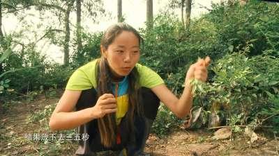 刘成复活岛用帐篷捕鱼充饥