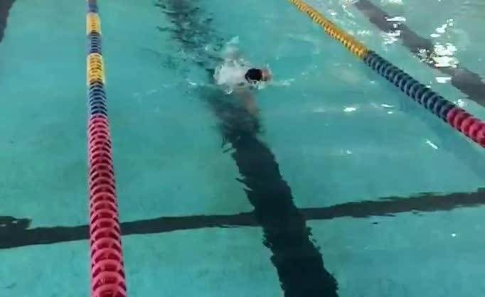 自由泳慢动作