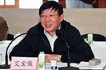 上海市副市长艾宝俊接受组织调查