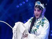 《走进大戏台》20170122:刘红霞冠军之路 台上一分钟台下十年功