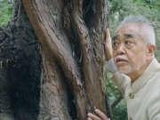 坚持40年,这个日本人每年设计一把会呼吸的椅子