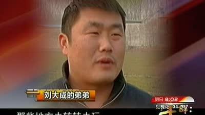 村里有位明星刘大成