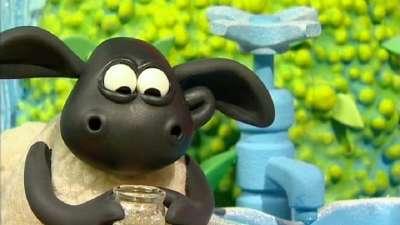 小小羊提米46