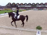 国际马联马术欧洲锦标赛 盛装舞步自由决赛II