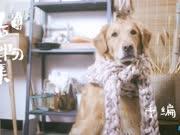 《造物集小日子》2种方法徒手编织围巾