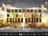 深圳巨鹿城市菁英白领拳击赛(全场录播)