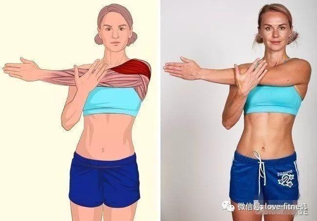 这篇文章,告诉小伙伴们健身前后怎样正确拉伸.