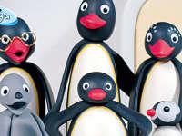 企鹅家族 第5季