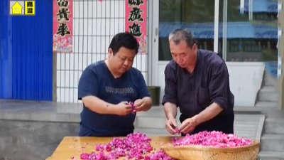 玫瑰饼邂逅绿豆糕  乾隆爷喜欢的京式宫廷御点
