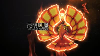 GPL中国站昆明凤凰战队标志设计理念
