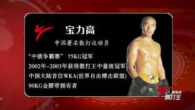 第八集《再叙辉煌》宝力高细说KO泰国拳王