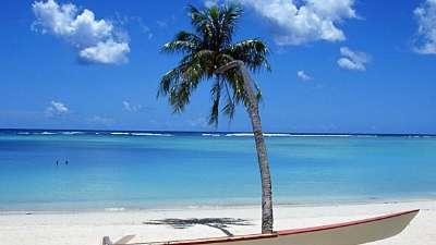 夏威夷之旅特辑