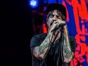红辣椒乐队Red Hot Chili Peppers:2017美国Bonnaroo波纳罗音乐节