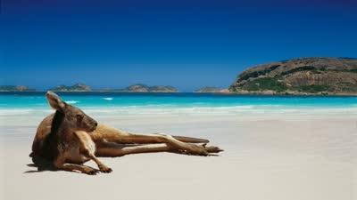 骑行11天1016公里 途径7个地区感受澳洲风景