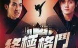 【动作】终极格斗【2004】 王嘉明  汤镇业  刘家荣