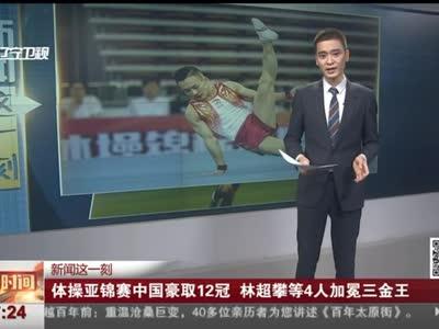 [视频]体操亚锦赛中国豪取12冠 林超攀等4人加冕三金王