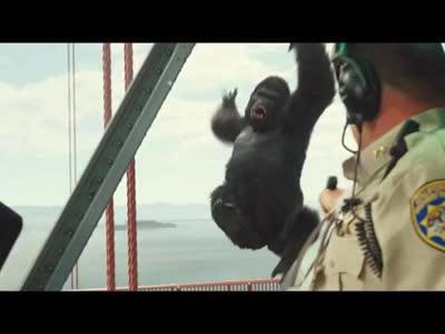 [视频]《猩球崛起3》新混剪视频追忆凯撒成长史