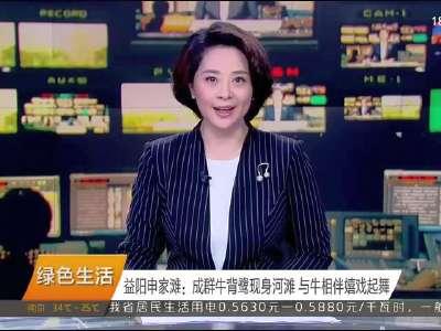 2017年08月26日湖南新闻联播