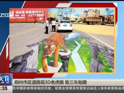 [视频]郑州市区道路现3D老虎画 致三车剐蹭