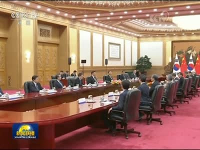 [视频]习近平同韩国总统举行会谈 两国元首一致同意 准确把握双边关系前进方向 确保中韩关系行稳致远