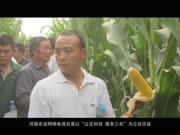 河南农业网络电视台