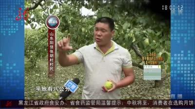 山东:多地突降冰雹 农民损失严重