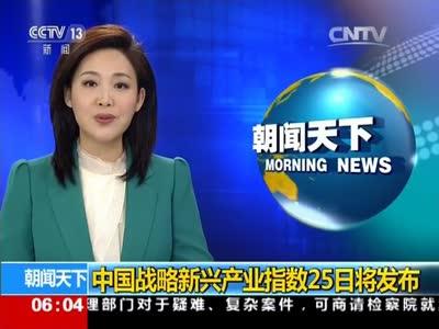 [视频]中国战略新兴产业指数25日将发布