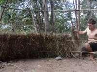 《极限荒野生存教学》第十八期 山上的茅草屋