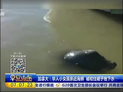 [视频]加拿大:华人小女孩亲近海狮 被咬住裙子拖下水