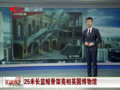 [视频]25米长蓝鲸骨架亮相英国博物馆